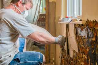 Dryzone Damp-resistant Plaster