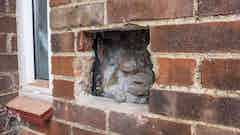 Damage to the cavity wall insulation caused by penetrating damp