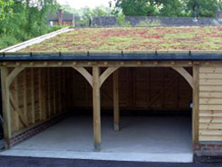 Sloping green roof