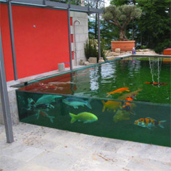 Waterproofing ponds including fish ponds for Concrete koi pond construction