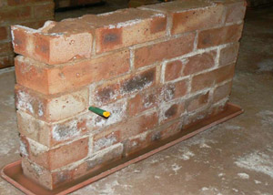 how to stop rising damp in brick walls