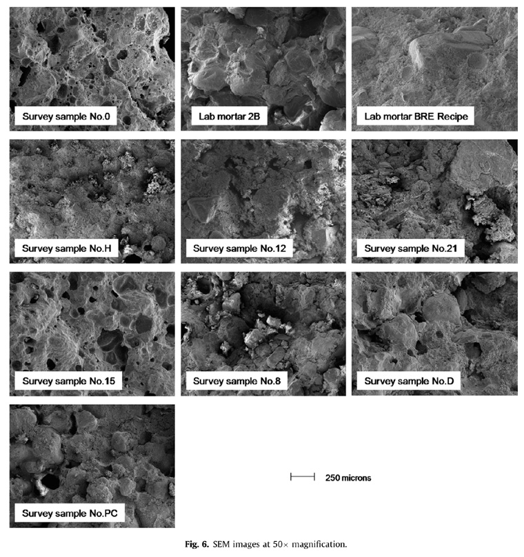 SEM images of mortars at 50× magnification