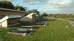 Green roofs (flat)