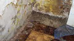 Damp Floors
