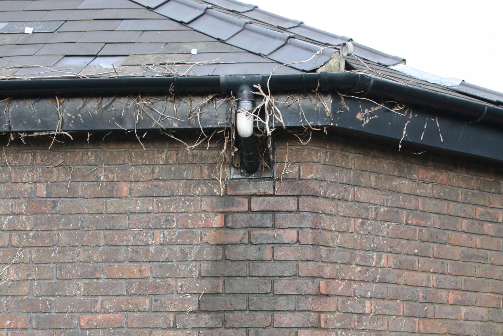 Rain penetration in walls penetrating damp for Leaking roof gutter