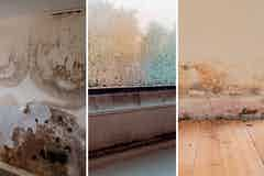 Types of dampness in buildings