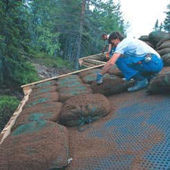 Turf roof construction