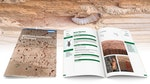 Woodworm Identification & Treatment Guide
