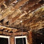 Dry Rot in Joists
