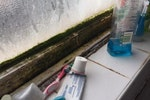 Mould in bathrooms