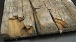 Dry rot / wet rot