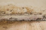 Rising damp signs - Decaying skirting board