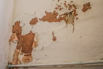 Rising damp signs - Peeling and blistering of wallpapers and paints