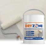 Dryzone Mould-Resistant Emulsion Paint
